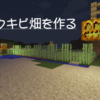 パンプキンパイ大量生産計画!(1)‐サトウキビ畑を作る