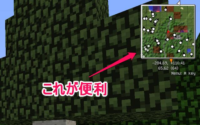 これで迷子にならない!マップMOD『Rei's Minimap』導入方法・使い方