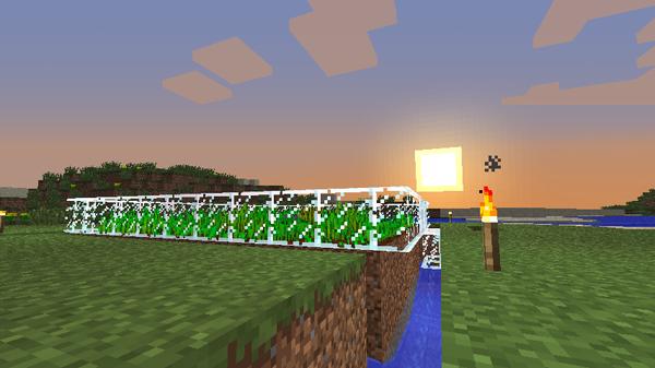 安定した食料を確保するために小麦畑を作る!